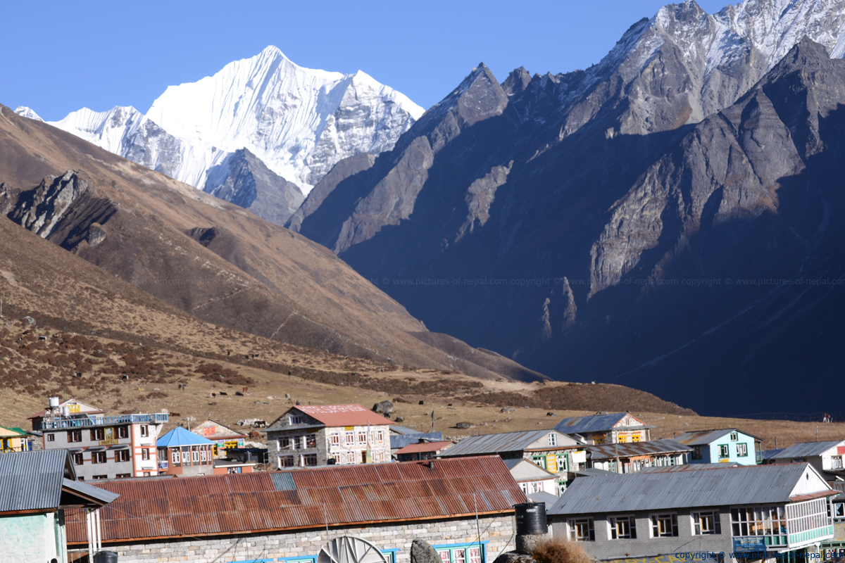 Langtang Village - Pictures of Nepal